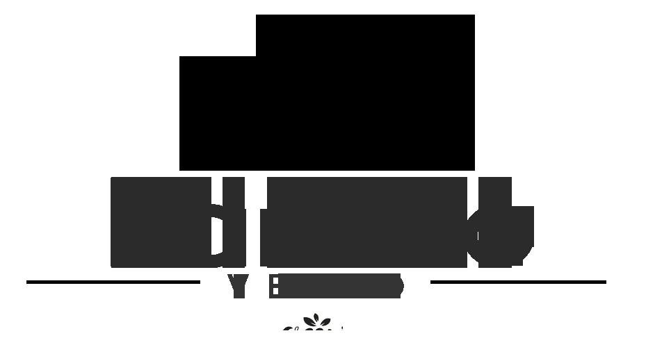 Rancho Velho Festas